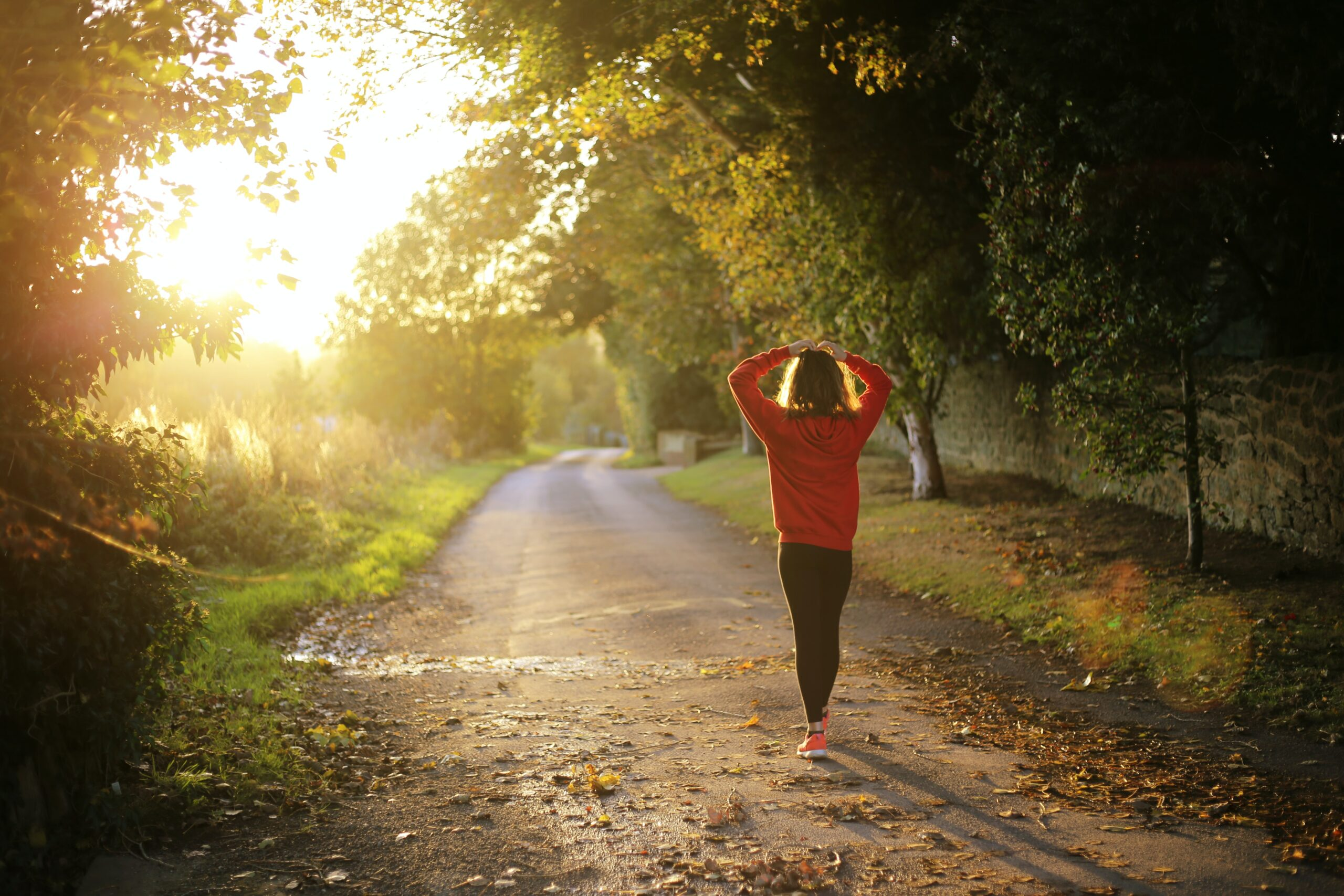 Associations of physical activity with positive mental health: A population-based study
